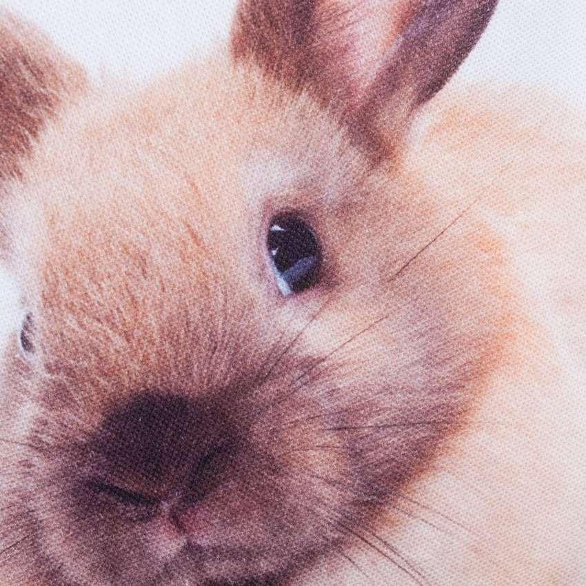 Potah D&F Sweet Bunny 45x45 cm
