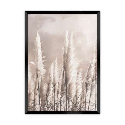 Obraz Grass