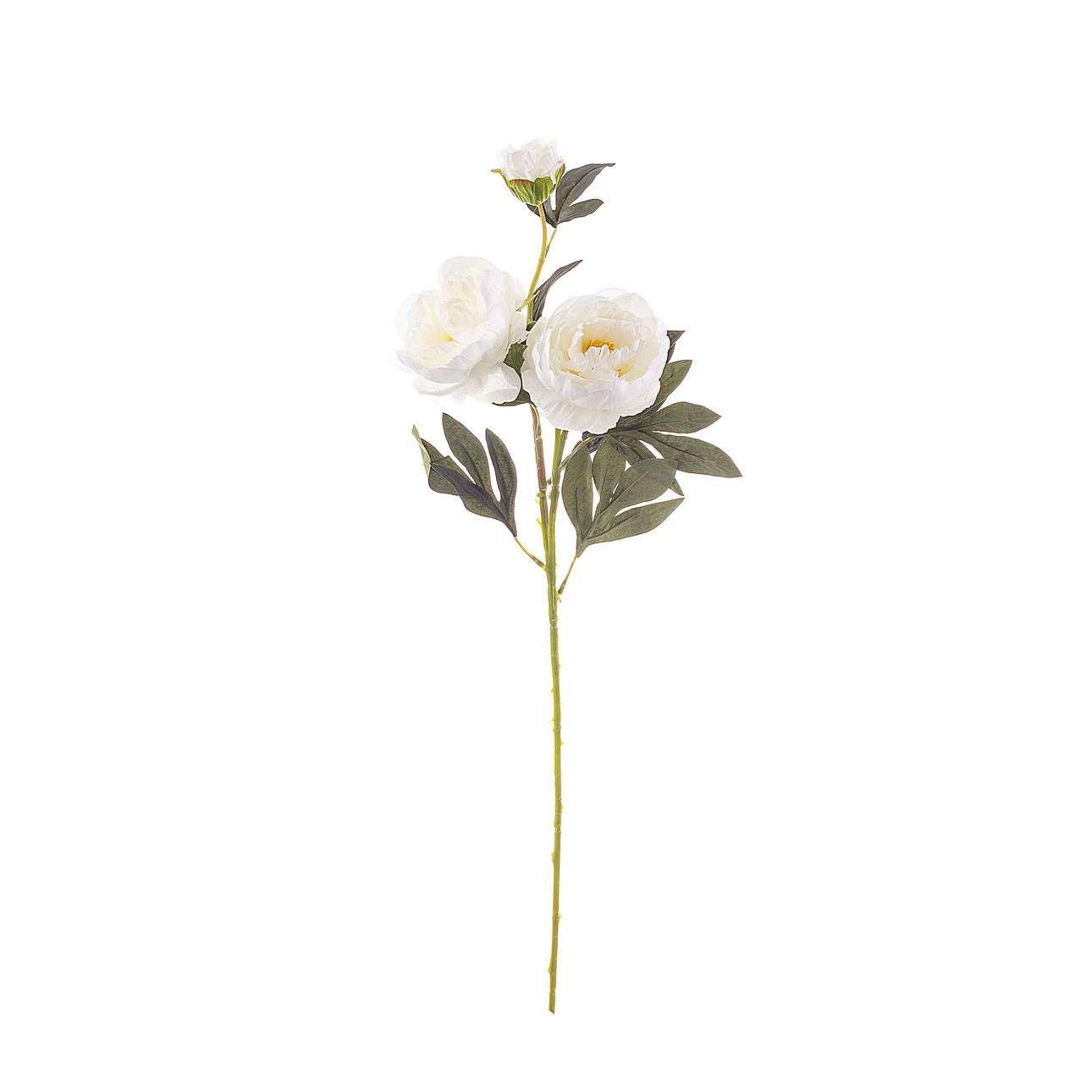 Kunstblume White Peony 75cm, 75 cm  | Dekoration > Dekopflanzen > Kunstpflanzen | Dekoria