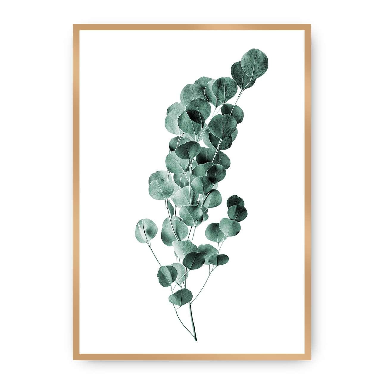 Poster Eucalyptus Emerald Green, 70 x 100 cm, Rahmen wählen: gold   Dekoration > Bilder und Rahmen > Poster   Dekoria