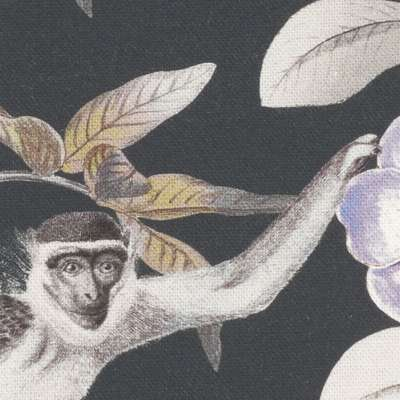 Rímska Roleta Bari V kolekcii Tropical Island, tkanina: 142-60